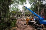 Ta Phrom Temple D700_18704 copy.jpg