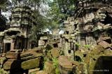 Ta Phrom Temple D700_18709 copy.jpg