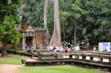 Ta Phrom Temple D700b_00229 copy.jpg