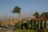 Santa Ana Winds Dec 9 2008
