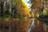 canal_rhone-rhin