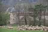 chateau de Thanville - 20