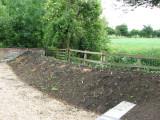 Planting, mid June 2009