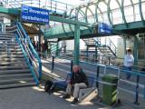 In den Helder wachten op het veer naar Texel
