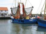 punk in haven Oudeschild