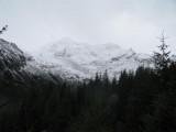 Sneeuw boven de boomgrens