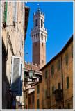 Sienna (Siena)
