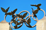 Olympic Doves