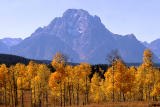 Autumn in the Tetons, Wyoming