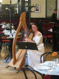 Harpist at the cafe
