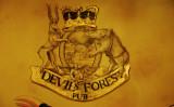 Pub's emblem