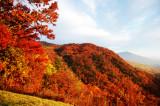 Fall Along the Blue Ridge Parkway 2008