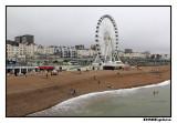 Brighton 2012