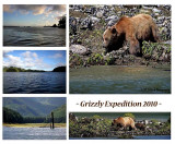 Grizzly Expedition 2010