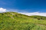 Art Loeb Trail 4