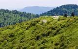 Art Loeb Trail 6