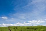 Art Loeb Trail 7