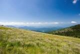 Roan Mountain 3