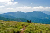 Roan Mountain 5