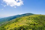 Roan Mountain 12