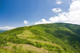 Roan Mountain 13