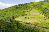 Roan Mountain 14