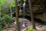 Moore Cove Falls 15