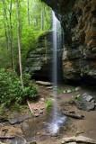 Moore Cove Falls 16