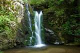 July 2 - Wolf Creek Falls, TN & Max Patch Mountain Sunset