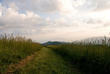 Max Patch Sunset 2
