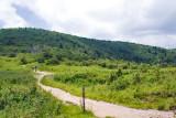 Ivestor Gap Trail 2
