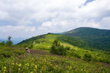 Art Loeb Trail 13