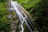 Lower Waterfall on Little Lost Cove Creek 1