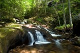 Bearwallow Creek - Nantahala NF 8