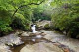 Lower Upper Creek 4