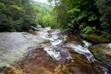 Lower Upper Creek 5