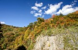 Blue Ridge Parkway Fall Color 2