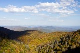 Blue Ridge Parkway Fall Color 4