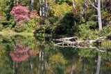 Lake Powhatan 2