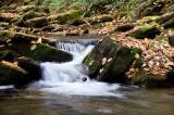 Hogshed Creek