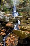 Maidenhair Falls 4