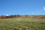 Max Patch Mountain 1