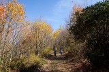 Max Patch Mountain 2