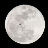 0020-Moon.jpg