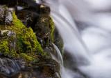 20120922_Cat Creek Falls_1376.jpg