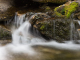 20120922_Cat Creek Falls_1385.jpg