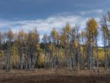 20120929_Alberta BC_0437.jpg