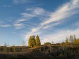 20120929_Chain Lake_0421.jpg