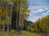 20121001_Alberta BC_0230.jpg