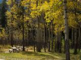 20121001_Alberta BC_0237.jpg